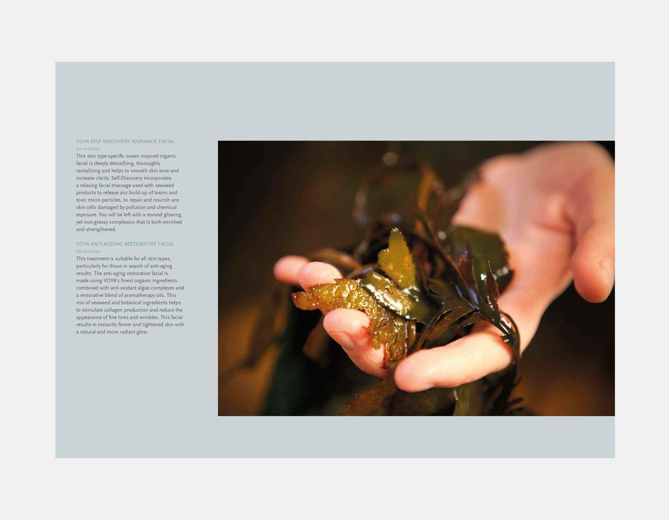 HH-Brochure-4.jpg
